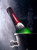 Rotkäppchen champagne bottle in cooler in mist