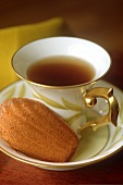 A cup of tea with a madeleine