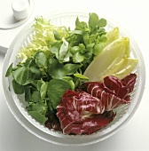 Spinning lettuce