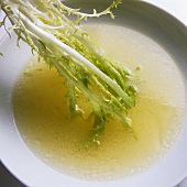 Dipping curly endive in dressing