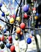 Brightly painted Easter eggs on branches in open air