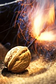 Walnut with burning fuse