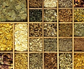 Various medicinal herbs (filling the picture)