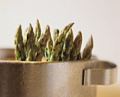 Green asparagus in a pot