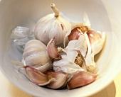 Garlic in white dish