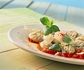 Gnocchi al basilico (potato dumplings with basil and sauce)