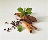 Cinnamon sticks, cloves and fresh basil