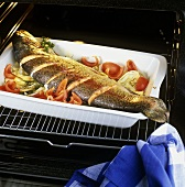 Cooking salmon trout with fennel & tomatoes in the oven