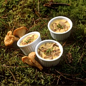 Egg and chanterelle flan in baking dish on grass