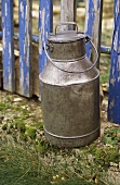 Milk can in front of wooden fence