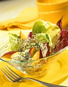 Radicchio and lettuce with peach and sprouts
