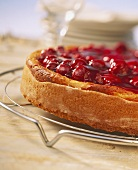 Cheesecake with red wine cherries on cake rack
