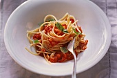 Spaghettini all'amatriciana (Pasta with tomato & bacon sauce)