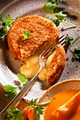 Camembert in Nusskruste mit Aprikosensauce