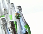 Several Mumm champagne bottles