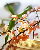 Asian table decoration: sprigs of cherry blossom & bamboo mat