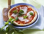 Pizza Margherita (pizza with tomato, mozzarella, basil)
