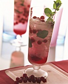 Redcurrant and mint cooler with ice cubes