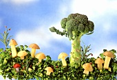 Broccoli meadow with potato mushrooms and broccoli tree