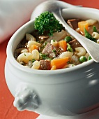 Zuppa di manzo e verdure (Beef soup with summer vegetables)