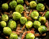 Brussels sprouts with bacon (filling the picture)