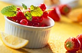 Redcurrants with lemon balm in baking tin