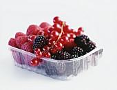 Fresh berries in plastic bowl