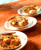 Scallop gratin in scallop shells