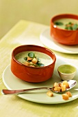 Creamed herb soup with watercress and croutons
