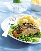 Peppered salmon with celery puree and savoy