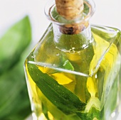 Home-made ramsons (wild garlic) oil in bottle