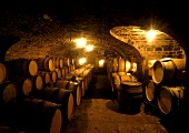 Weinkeller in Frankreich (Vergisson, Maconnais)