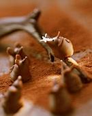 Chocolate mice on cocoa and chocolate twig