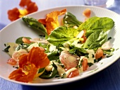 Spinach salad with Roquefort and edible flowers