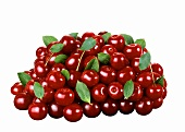 A heap of red cherries with leaves