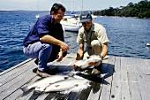 Salmon fisherman in Tasmania
