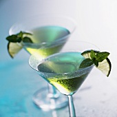 Peppermint cocktail with limes and fresh mint