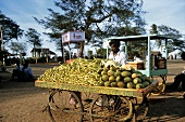 Indian vegetable seller with wooden barrow