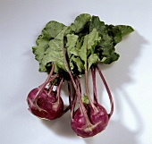 Red kohlrabi with leaves