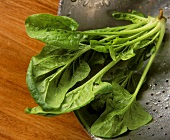 Fresh spinach with drops of water