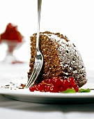 Piece of chocolate and nut cake with icing sugar; redcurrants