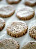 Olive biscuits on baking paper