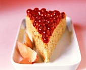 Piece of white poppy seed cake with redcurrants