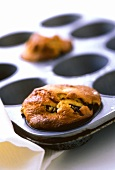 Blueberry muffin in the baking tin