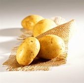 New potatoes on jute