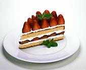 Piece of strawberry gateau with mint
