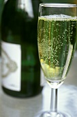 Champagne glass beside champagne bottle