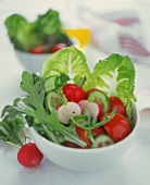 Mixed summer salad with rocket, radishes and tomatoes