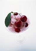 Granita ice cream with cherries