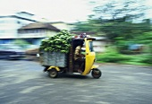 Transporting bananas by goods auto rickshaw